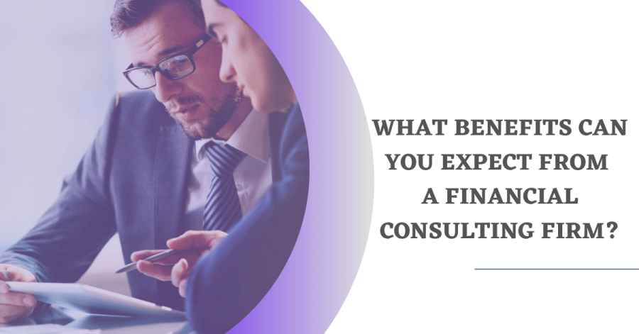 Services of a Financial Consulting Firm