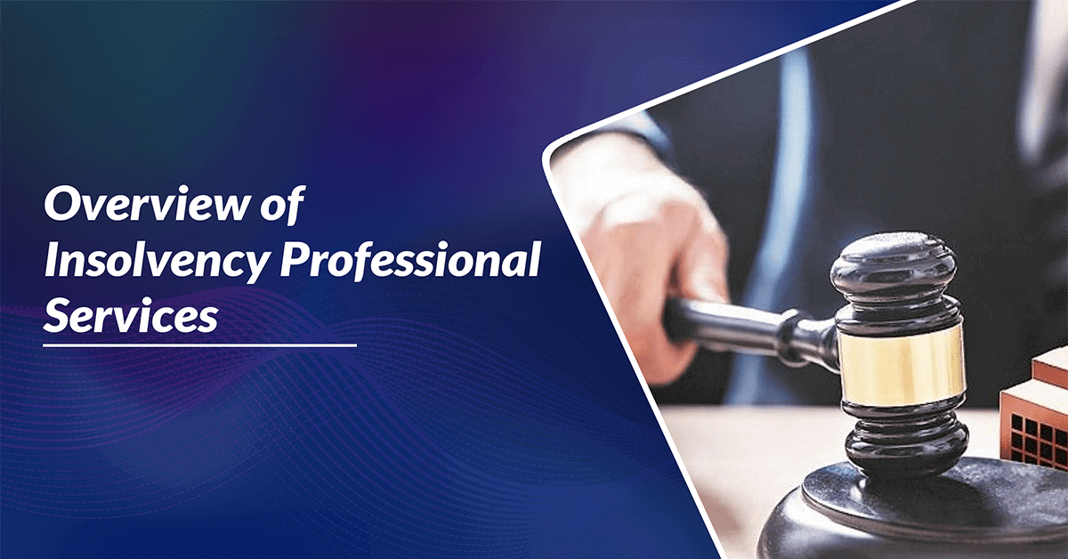 Overview of insolvency professional services